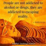 rehab quotes online